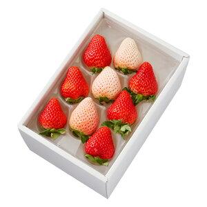 新宿高野 初恋の香り&ゆうべに9 #29100 | フルーツ ギフト フルーツギフト 果物 くだもの プレゼント お祝い 御祝 内祝い 内祝 お供え お礼 お見舞い 結婚祝い 結婚内祝い 新築内祝い お取り寄