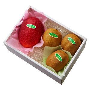 【公式】 新宿高野 宮崎マンゴー&旬果B #29100|果物 くだもの お取り寄せフルーツ お取り寄せ 内祝い お祝い ギフト プレゼント お返し マンゴー 高級 フルーツギフト 結婚内祝い 出産内祝い