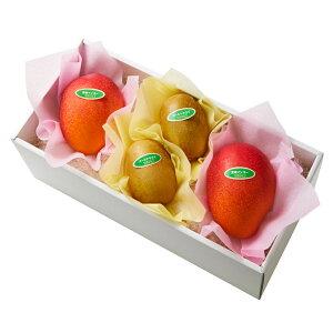 【公式】 新宿高野 宮崎ミニマンゴー&旬果C #29100 | 果物 くだもの お取り寄せフルーツ お取り寄せ 内祝い お祝い ギフト プレゼント お礼 お返し マンゴー 宮崎マンゴー 高級 フルーツギフ