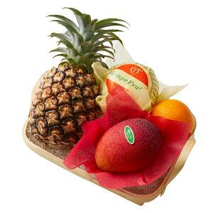 【公式】 新宿高野 宮崎マンゴーバラエティーB #29100   果物 くだもの お取り寄せフルーツ お取り寄せ 内祝い お祝い ギフト プレゼント お返し マンゴー 高級 フルーツギフト 結婚内祝い 出