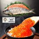 北海道 日高沖産 の「銀聖」三國推奨 漁吉丸の銀聖新巻鮭姿2.5kg+いくら醤油漬セット産地直送 お歳暮 お正月 おせ…