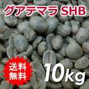 【送料無料(北海道・沖縄を除く)】 コーヒー 生豆 グアテマラ SHB 10kg(5kg×2)同梱分類【B】