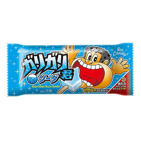 赤城乳業 ガリガリ君ソーダ (31+1)32入(冷凍)
