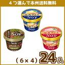 (4つ選んで、本州冷凍送料無料(北海道・沖縄を除く))クラシエ SOY(6×4)24入(冷凍)
