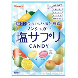 カンロ ノンシュガー塩サプリキャンディ 6入 【ラッキーシール対応】@