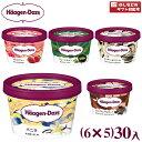 (5つ選んで、本州一部冷凍送料無料)ハーゲンダッツ ミニカップ (6×5)30入(冷凍)【ラッキーシール対応】