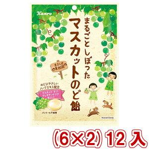 (本州送料無料) カンロ まるごとしぼったマスカットのど飴 (6×2)12入