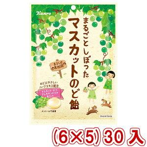(本州送料無料) カンロ まるごとしぼったマスカットのど飴 (6×5)30入 (Y80)