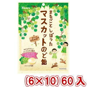 (本州送料無料) カンロ まるごとしぼったマスカットのど飴 (6×10)60入 (Y12)