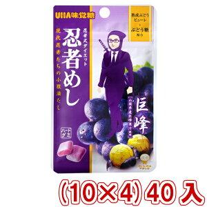 (本州送料無料) 味覚糖 忍者めし 巨峰味 (10×4)40入 (Y80)