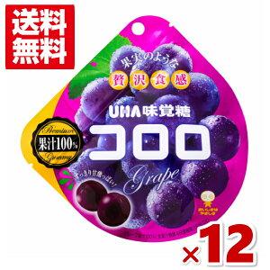 (メール便全国送料無料) 味覚糖 コロロ グレープ (6×2)12入 (ポイント消化)