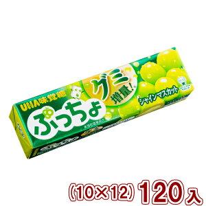 (本州送料無料) 味覚糖 ぷっちょスティック シャインマスカット (10×12)120入 (Y80)
