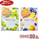(2つ選んでクリックポスト全国送料無料)味覚糖 MINT GO (ミントゴー)(10×2)20入 (ポイント消化)(CP3) 【ラッキ…