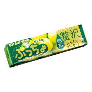 味覚糖 ぷっちょスティック 贅沢シャインマスカット 10入