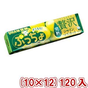 (本州送料無料) 味覚糖 ぷっちょスティック 贅沢シャインマスカット (10×12)120入 (Y80)