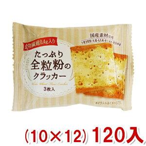 (本州送料無料)前田製菓 たっぷり全粒粉のクラッカー (10×12)120入 (Y10)(2ケース販売)