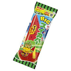 (本州一部冷凍送料無料) ロッテ BIGスイカバー 125ml×25入 (アイス)(冷凍)*