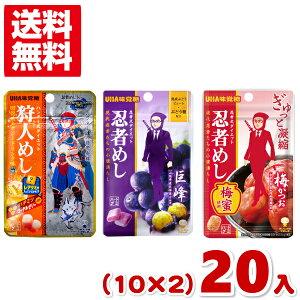 (2つ選んでメール便全国送料無料)味覚糖 旨味シゲキックス 忍者めし 狩人めし (10×2)20入 (ポイント消化)