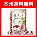 (本州送料無料!)アイファクトリー 個包装 梅ぼしのシート(大) 40g(6×6)36入.