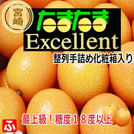 宮崎県産・完熟きんかん「たまたまexcellent・3L」1kg