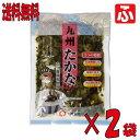 【送料無料】(太陽漬物)九州たかな220g×2袋【メール便対応】