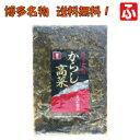 【送料込み最安値】【オニマル】からし高菜300g×1袋【送料無料】
