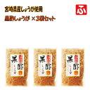 【無添加】黒酢しょうが(蜂蜜入り)[上沖産業] 130g×3袋【送料無料】