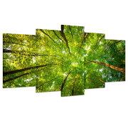 インテリア絵画アートパネル「緑の森」壁掛け風景写真の壁の写真を絵画ポスターキャンバス絵画5パネルセット(木枠付きの完成品)BIGキャンパスで大迫力!あなたの部屋のために新たな価値をもたらします。