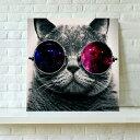 送料無料・あす楽! アートパネル絵画 猫 かわいい インテリア 雑貨 猫 壁キャンバス絵画 猫 壁アート フォトフレーム 動物50cm×50cm