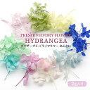 プリザーブド・ドライフラワー あじさい 15色選べる ハーバリウム 紫陽花 手作りキット【メール便対応】 ハーバリウ…