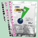 殺虫剤オルトラン水和剤 500g野菜・花・果樹柑橘にと幅広く使える!