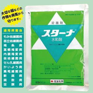 【送料込2袋】殺菌剤スターナ水和剤 500g×2細菌病専用防除剤