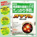 殺菌剤オラクル顆粒水和剤(300g)病原菌を直接たたく!根こぶ病をしっかり予防!