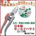 【定形外郵便発送 送料無料】日本製 チカマサ ホールドハサミ(TS-77HB)バラ・生花・野菜・果樹の収穫に最適