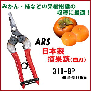 【送料無料】アルス採果鋏 曲刃(310-BP)本格果樹園から家庭菜園まで柿・梨・柑橘・デコポンの収穫に