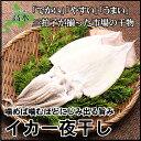 【北海道産】イカ一夜干し2枚入り市場の干物【真いか】