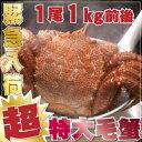 ジャンボ毛蟹 1尾1kg 超特大 最高ランク かに 毛ガニ 毛蟹 毛がに みそ 海鮮 ギフト 贈答 お歳暮 内祝い 魚 お取り寄…