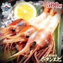 なまらデカイ!! 特大 ボタン海老 2Lサイズ 500g (6-9尾) 脅威のBIGサイズ 同梱推奨 ぼたんえび 牡丹海老 牡丹えび お…