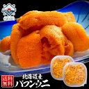 うに ウニ 塩水 北海道産 バフンウニ 【送料無料】200g(100g×2パック) 【他商品との同梱不可】 最高級のバフンウニ …