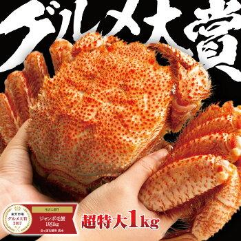 ジャンボ毛蟹1尾1kg超特大最高ランクの堅かに【毛ガニ】【毛蟹】【毛がに】【かに】【みそ】【ギフト】【贈答】