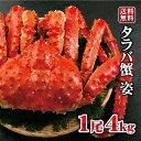 \残り杯数わずか/ 超特大!ボイルタラバガニ 姿 北海道産 1尾4kg タラバガニ ボイル 蟹 セット たらば たらばがに …