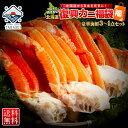 【北海道復興福袋】 福袋 海鮮福袋セット お取り寄せグルメ 北海道グルメ グルメセット お取り寄せ グルメ 食品 海産…