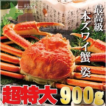 【超特大】ジャンボズワイガニ姿900g前後【ズワイガニ】【ずわいがに】【ズワイ蟹】