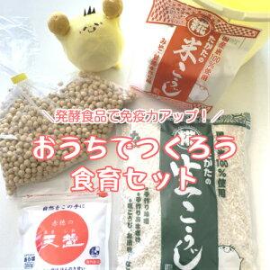 手作り味噌 セット 【出来上がり3kg用 (仕込タル付)】