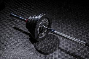 バーベル セット 50kg 高品質 ストレート バー シャフト プレート ベンチプレス 筋トレ 器具 グッズ トレーニングマシン 自宅 送料無料 女性 ファイティングロード 筋トレ トレーニング ダイ