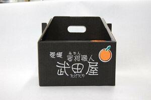 【送料無料】愛媛みかん小粒っ子5kg