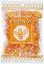 【送料無料】ローヤルゼリーキャンディー 2袋セット【ヤマトDM便】
