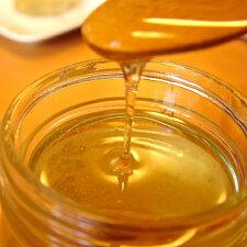 みかん蜂蜜はパンやクッキー、ホットケーキなどとご一緒にどうぞ♪
