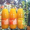 こだわり100%ストレートみかん&オレンジジュース 3本セット【送料無料】