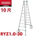 長谷川工業 ハセガワ 脚立専用 RYZ1.0-30 天板高さ:2.82〜3.13m 最大使用質量:100kg 春市セール5月末まで